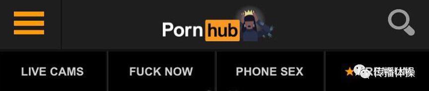 Pornhub,一个神奇的网站