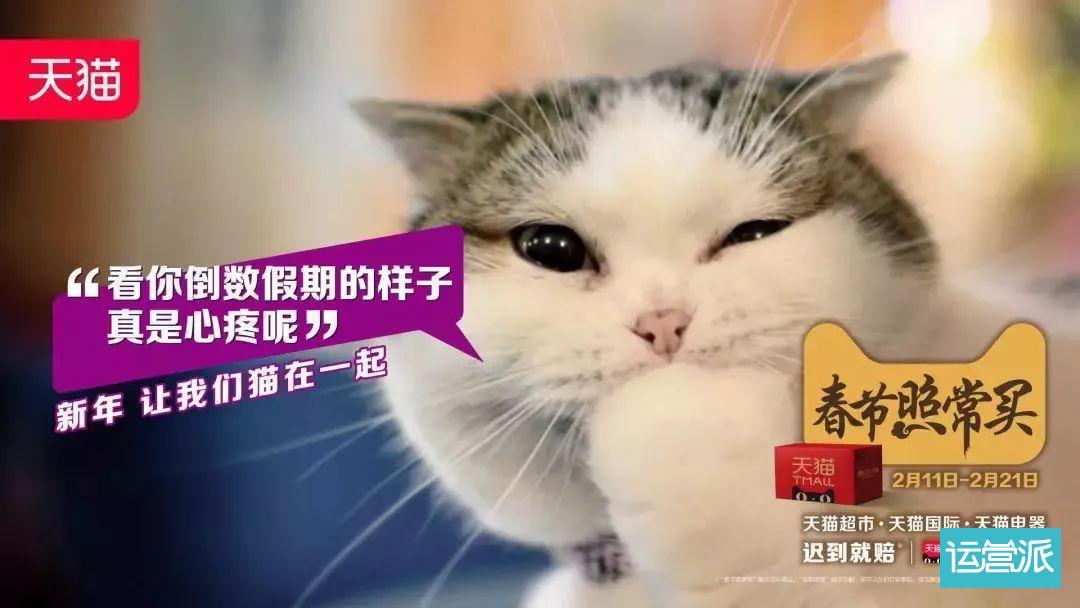 星巴克猫爪杯为什么火?