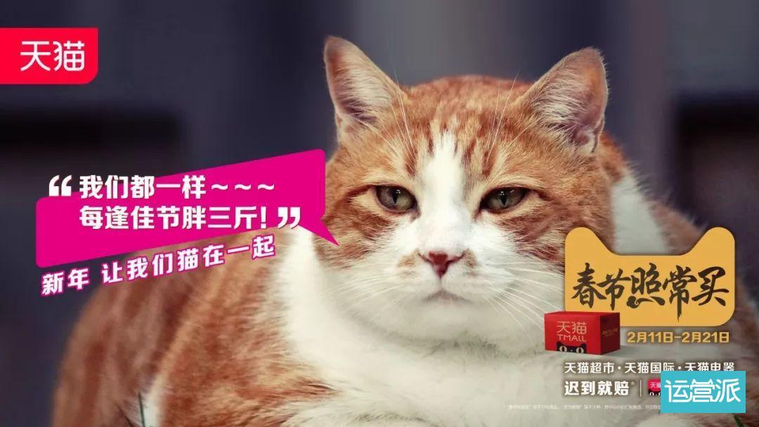广告人!你已被猫包围了!三问读懂猫营销